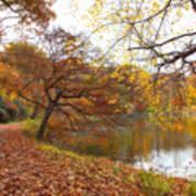 Autumn By The Lake Art Print