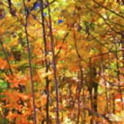 Autumn Colored Art Print