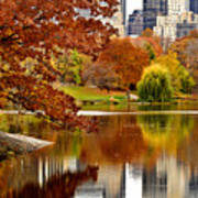 Autumn Colors In Central Park New York City Art Print