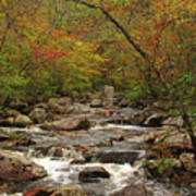 Autumn Colors On Pickle Creek 2 Art Print
