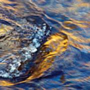 Autumn Colors River Rapids Art Print