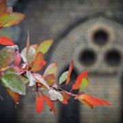 Autumn Colour Art Print