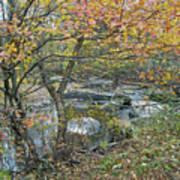 Autumn Comes To The Unami Creek Art Print
