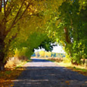 Autumn Country Lane Art Print