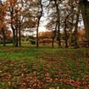 Autumn Fields, Art Print