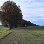Autumn Fields, Syke, Germany Art Print
