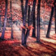 Autumn Firelight Art Print