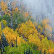 Autumn Fog And Snow Art Print