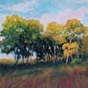Autumn Grove Art Print
