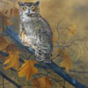 Autumn Highlights - Great Horned Owl Art Print