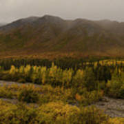 Autumn In August Brooks Range Alaska Art Print