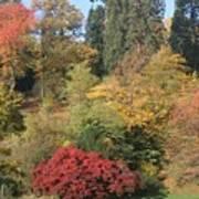 Autumn In Baden Baden Art Print