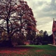 Autumn In Cambridge  Art Print