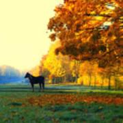 Autumn In Kathrines Way Art Print