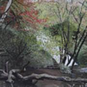 Autumn In Japan Art Print