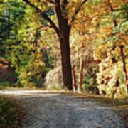 Autumn In Michigan Art Print