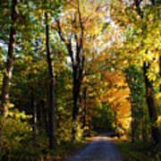 Autumn In Missouri Art Print