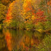 Autumn In Monroe Art Print