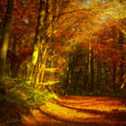 Autumn In Siebengebirge Art Print