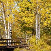 Autumn In Teton National Park Art Print