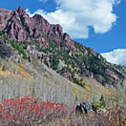 Autumn In The Aspen Hills Art Print