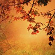 Autumn In The Fog. Art Print