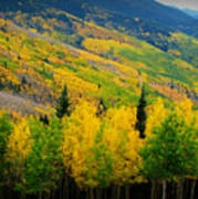 Autumn In The Rockies Art Print