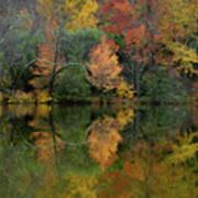 Autumn Lagoon Reflection  Art Print