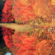 Autumn Lake Scenery Art Print