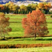 Autumn Landscape Dream Art Print by James BO  Insogna