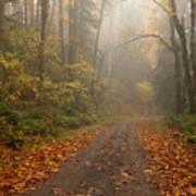 Autumn Lane Art Print by Mike  Dawson