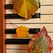Autumn Leaf Trio on Piano Art Print