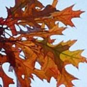 Autumn Leaves 21 Art Print