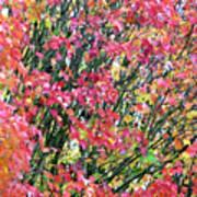 Autumn Leaves 4 Art Print