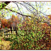 Autumn Leaves Against A Fence Art Print
