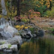 Autumn Leaves And Merced River, Mariposa County, California Art Print