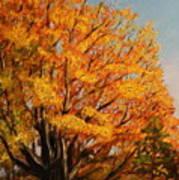 Autumn Leaves At High Cliff Art Print by Daniel W Green