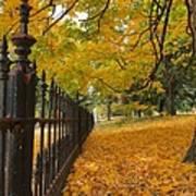 Autumn Leaves At Lafayette Park Art Print