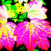 Autumn Leaves Holiday Style Art Print