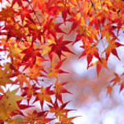Autumn Leaves Print by Myu-myu