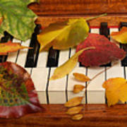 Autumn Leaves Tickle The Ivories Art Print