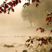 Autumn Mist Art Print
