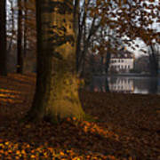 Autumn Morning In Park Branitz Art Print
