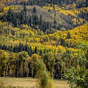 Autumn On A Colorado Range Art Print