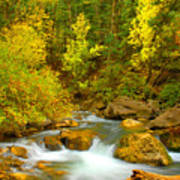 Autumn On Big Cottonwood River Art Print