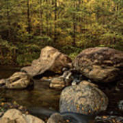 Autumn On The Creek  Art Print
