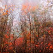 Autumn On The Mountain Art Print