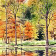 Autumn Oranges Art Print