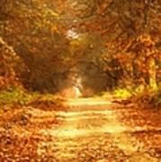 Autumn Paradisium Art Print