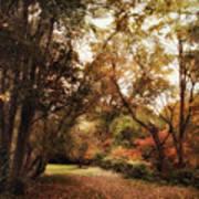 Autumn Passage II Art Print